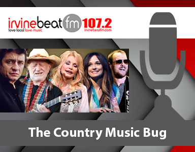 Country Music Bug - By Dawn Jamison